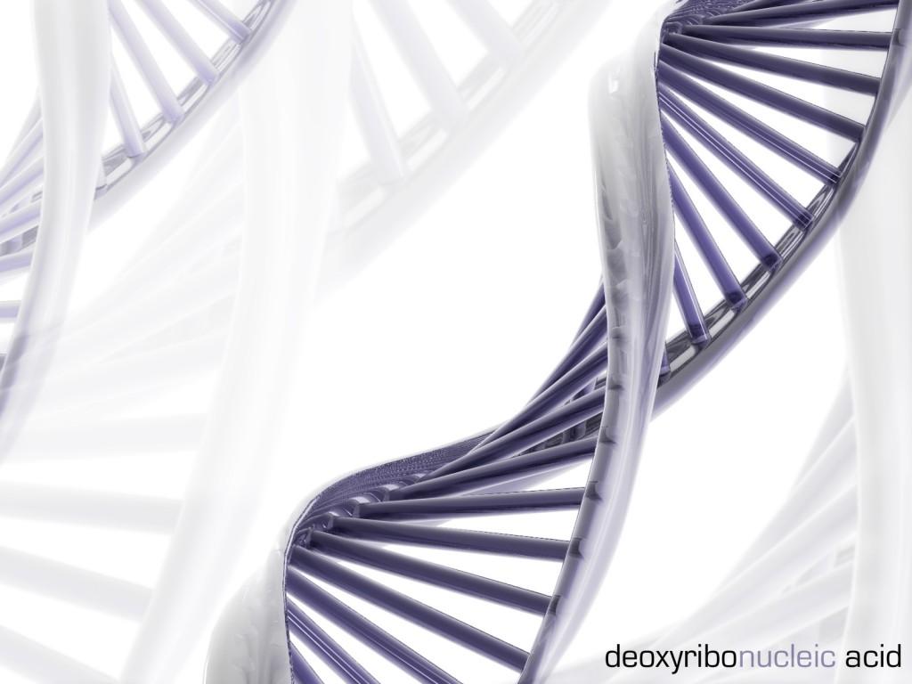 DNA-1600x1200.jpg